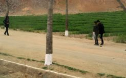 北朝鮮の地方・農村を歩く北朝鮮人