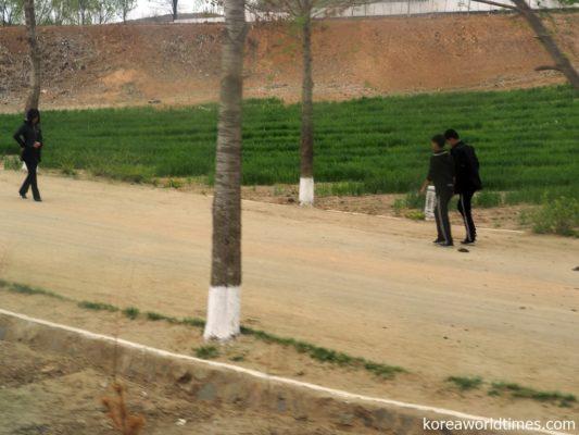 北朝鮮でPCR検査を実施するなら軍人から