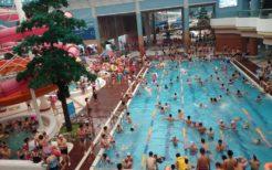 紋繍遊泳場(プール)