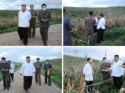朝鮮中央テレビが24時間テレビ状態で台風情報を夜通し伝える