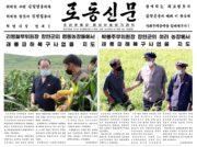 労働新聞の異変(2) 「独裁」からの脱皮か?健康への不安か?