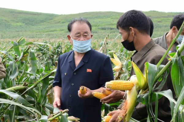 新型コロナも台風も「自力更生」で対処する北朝鮮
