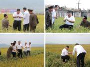 懸念される北朝鮮の食糧危機 ロシアから今年2度目の食糧支援を受ける