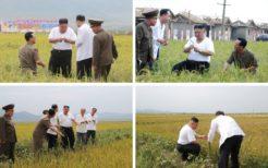 台風被害地を視察する金正恩委員長