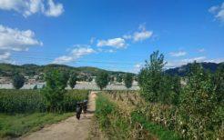 北朝鮮の農村