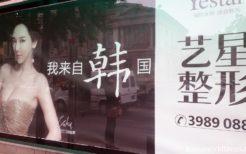 韓国・林智慧(イム・ジヘ)を起用した美容整形広告