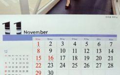 2020年高麗航空カレンダー11月