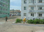 「汚物を宝物に変えよ」世界1過激なリサイクルで生き残り図る北朝鮮